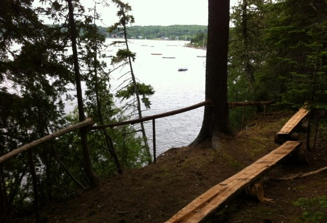 5 Reasons to Check Out Blueberry Hill This Summer