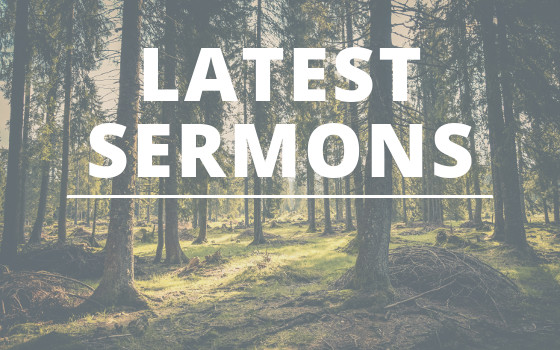 Lastest Sermons from Church of the Rez